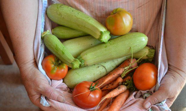 Selbst Gemüse anbauen