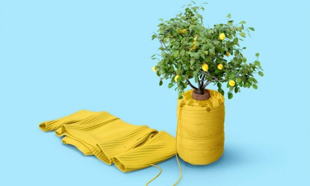 Tipps für mehr Nachhaltigkeit im Haushalt
